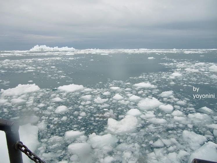 CIMG0407碎片浮冰太壯觀(首圖).JPG