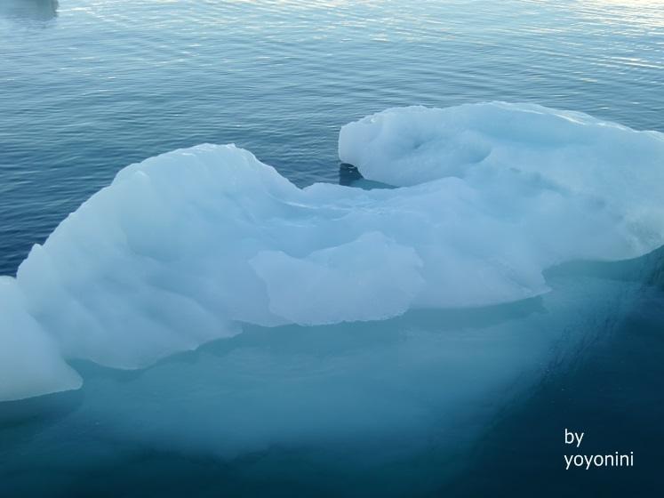 CIMG0677藍浮冰.JPG
