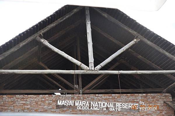 DSC_0283馬塞馬拉保護區.JPG