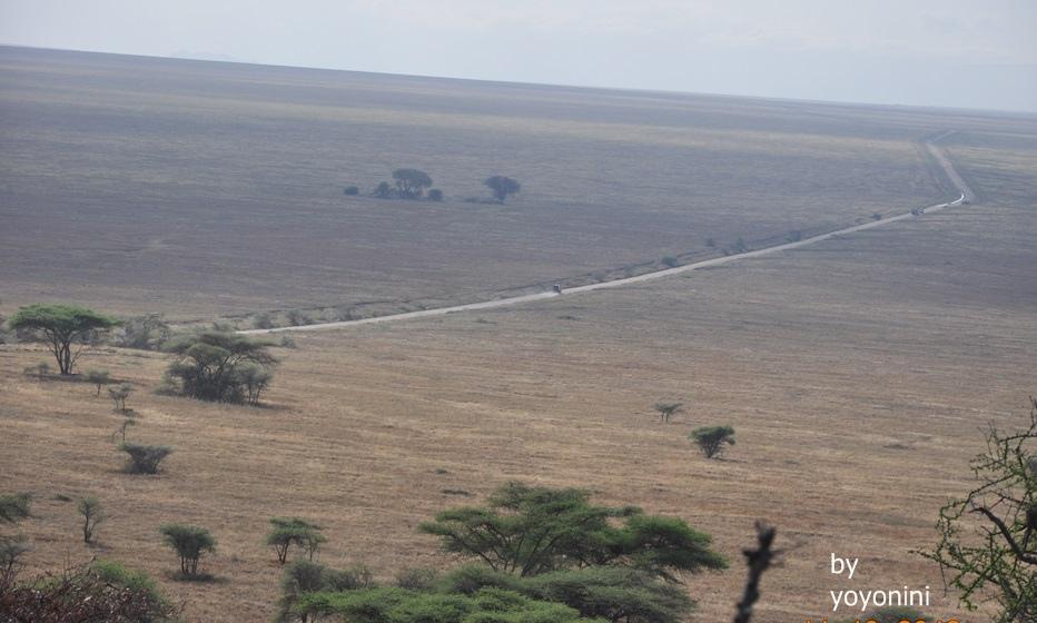 DSC_0339肯亞坦尚尼亞分界.JPG