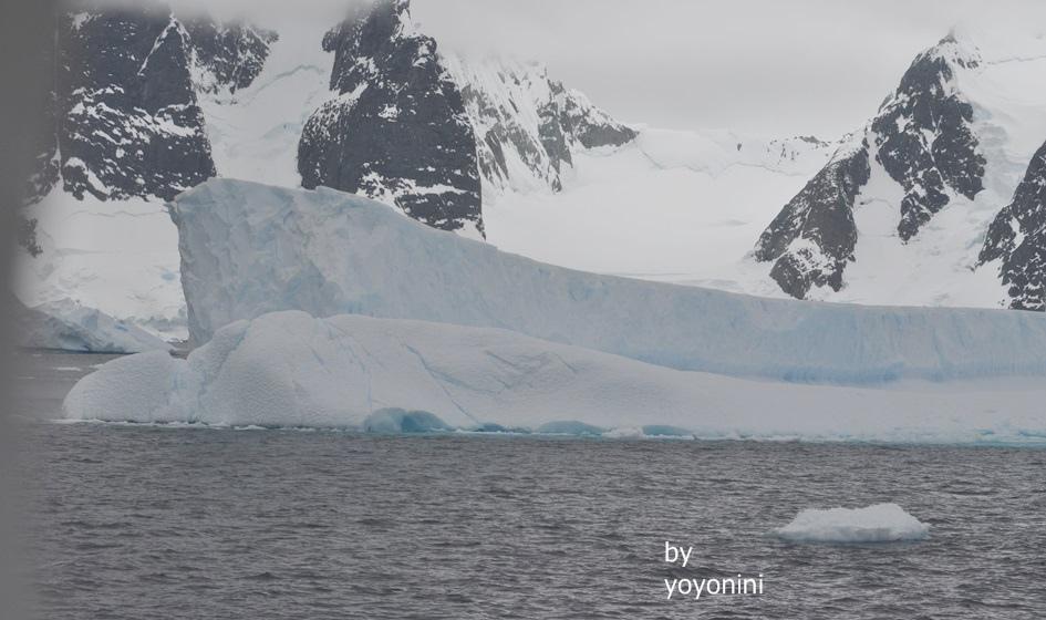 DSC_0701像一條船浮冰.JPG