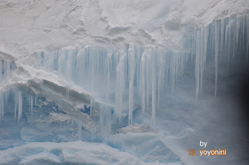 DSC_0065冰山形成冰條狀.JPG
