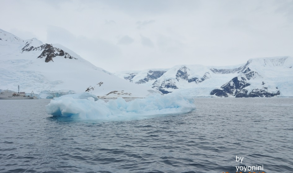 DSC_0312大冰山前南極冰.JPG