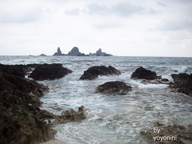 100_2416黃昏時候去貝殼沙灘.JPG