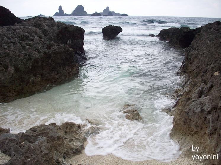 100_2419貝殼沙灘.JPG