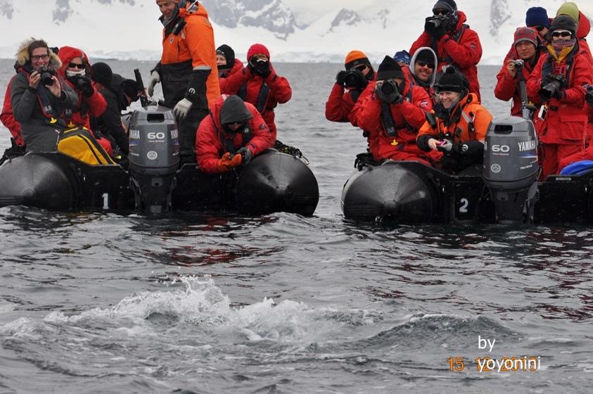 DSC_0952下船拍鯨魚.JPG