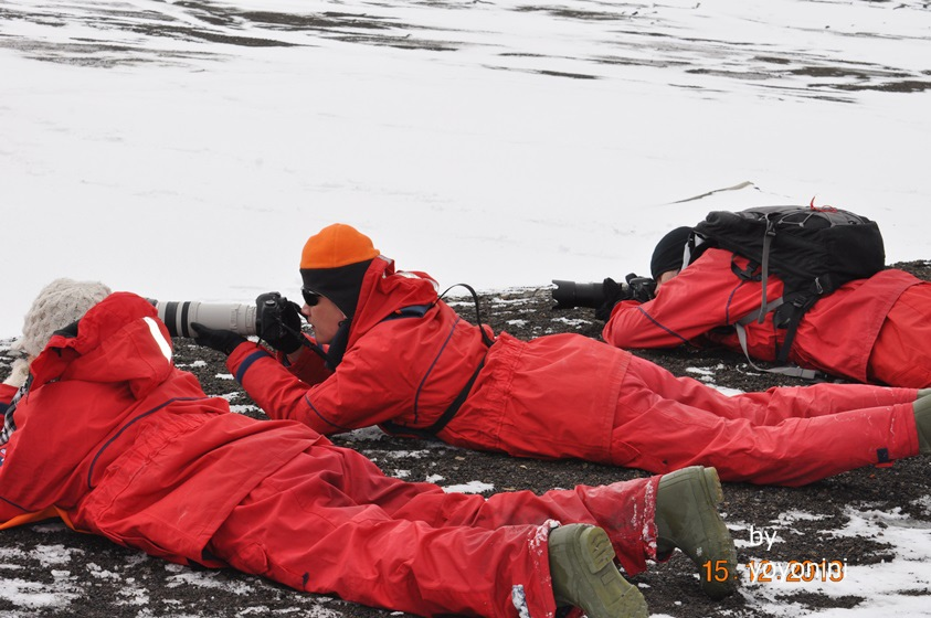 DSC_0521團員趴著拍海豹.JPG