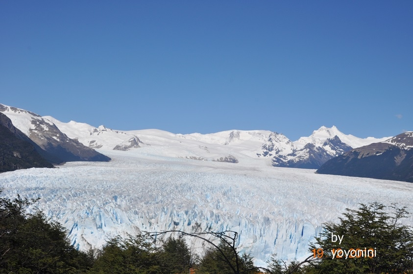 DSC_0865莫雷諾冰川.JPG