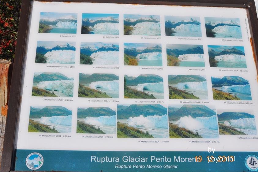 DSC_0878翻拍莫雷諾冰川.JPG
