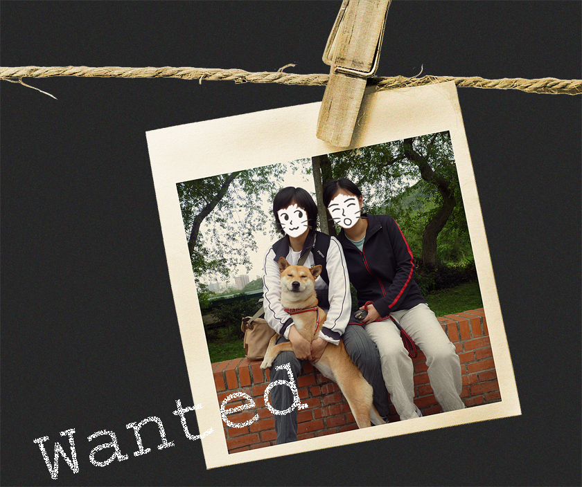 wanted拷貝.jpg