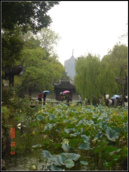 攝政園荷花池