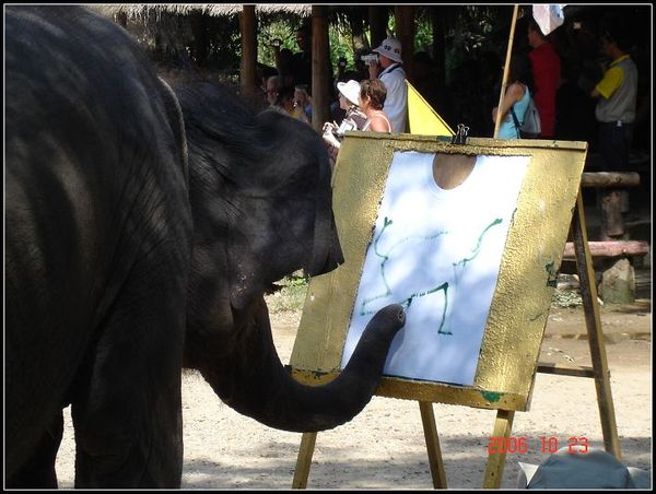 比我更繪畫圖的大象
