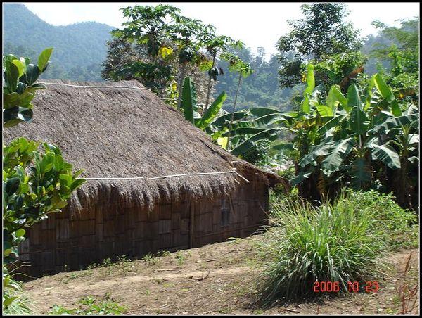 村落裡的茅屋