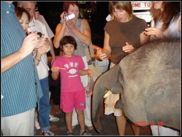小象美眉今天也想逛夜市