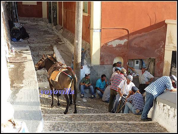 希臘 聖托里尼島 費拉 驢子大道 Fira, Santorini, Greek