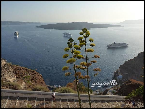 希臘 聖托里尼島 費拉 驢子大道 Fira, Santorini, Greece