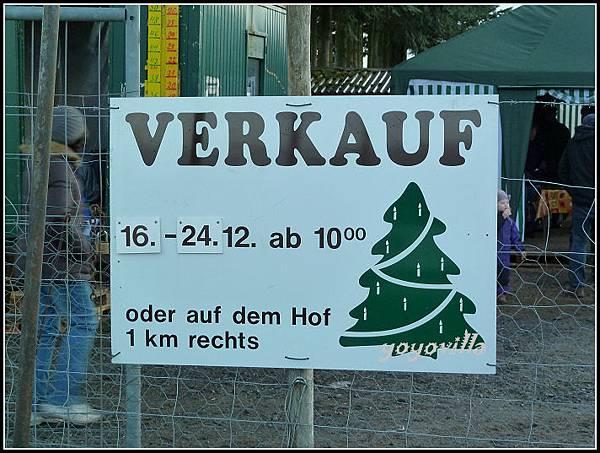 德國 買聖誕樹