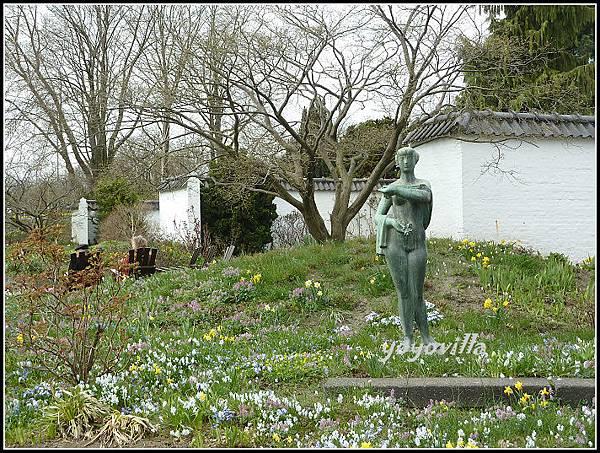 德國 漢堡 植物園的花 Planten un Blomen, Hamburg, Germany