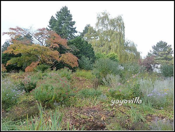 秋天的顏色 Autumn in Germany