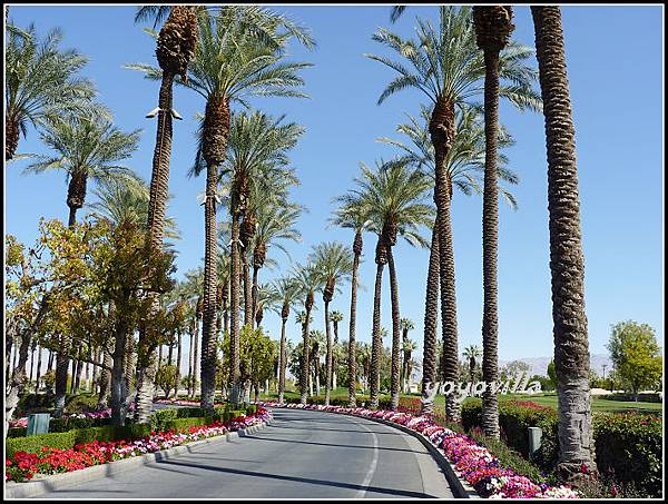 美國 加州 JW Marriott Desert Springs Resort & Spa, Palm Desert