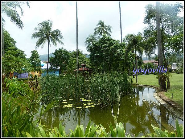 泰國 普及島 巴東海灘 Duangjitt Resort, Patong Beach, Phuket