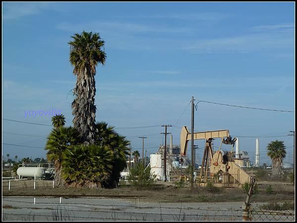 美國 加州 亨廷頓海灘 Huntington Beach, California