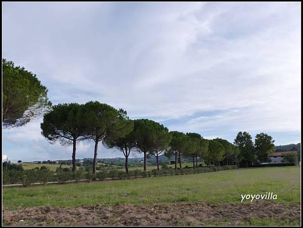義大利 阿西西 Asisi, Italy