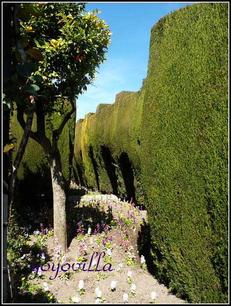 Alhambra, Granada 西班牙阿罕布拉宮 花園篇