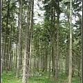 歐洲鄉村風景 contryside, Europe