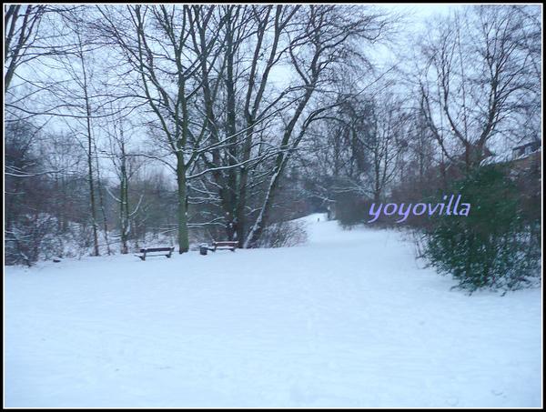 白色聖誕節