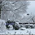 德國 下大雪的冬天 Geramny