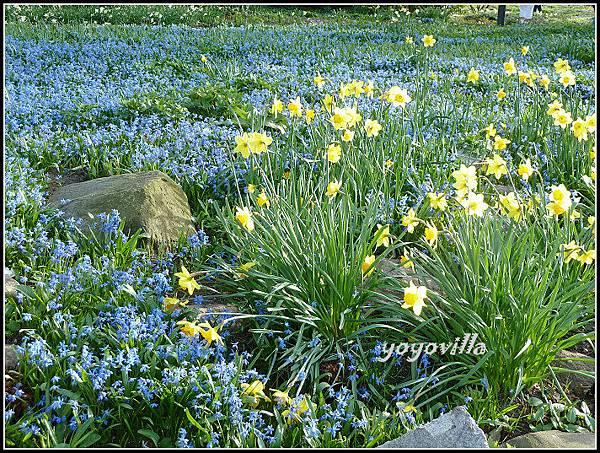 德國 春天 German spring time