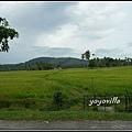 馬來西亞 蘭卡威 鄉村景色 Langkawi, Malaysia