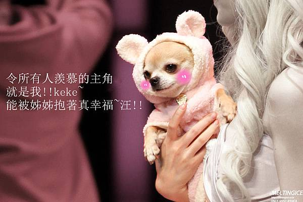 [YoonSica] Legally Blonde -19