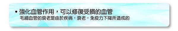2014-03-25_矽素05_anita