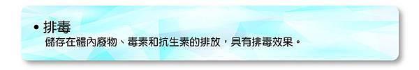 2014-03-25_矽素04_anita