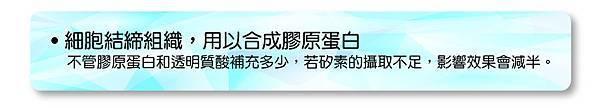 2014-03-25_矽素06_anita