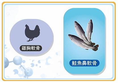 鮭魚鼻軟骨 %26; 雞軟骨_1.jpg
