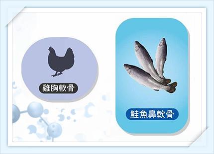 鮭魚鼻軟骨 %26; 雞軟骨_2.jpg