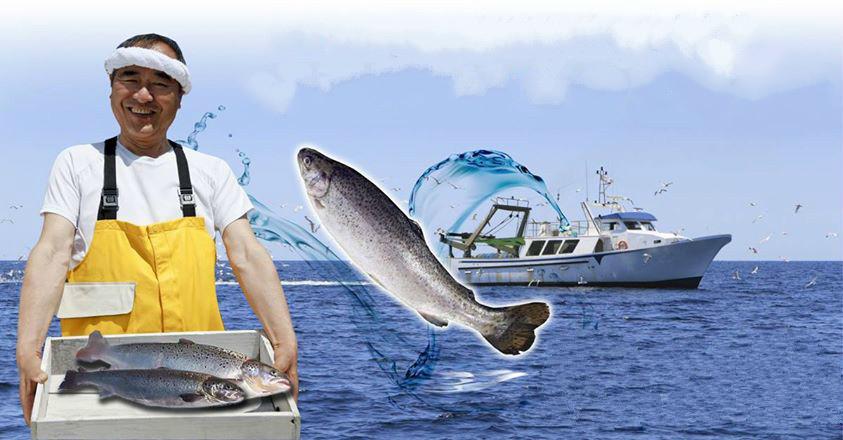 飼料雞胸軟骨與鮭魚鼻軟骨_無字.jpg