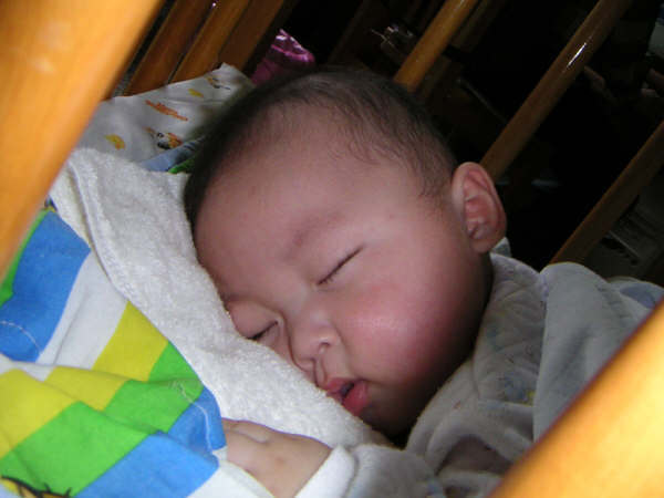 臉臉睡著了