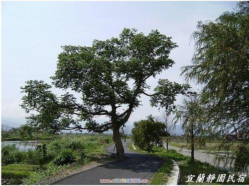 安農溪腳踏車步道13.jpg