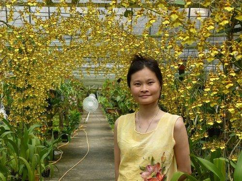 花卉農場5
