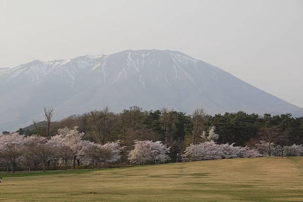 日本青森東北之旅(105.4.24-28)_597.JPG