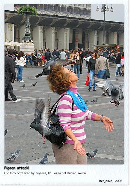 Milan_T05.JPG