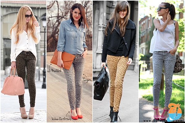 leopard blogger