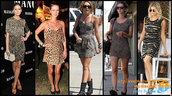 celeb animal print dresses 2