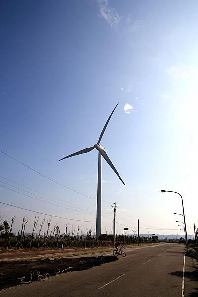 海山漁港-風車.jpg