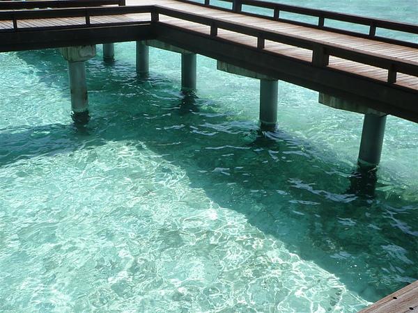 海水也很清澈