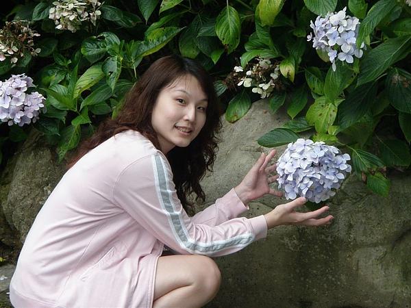 對了~~剛好是杉林溪的繡球花節^^